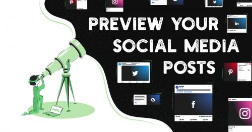 Prévisualisation des posts avec publer